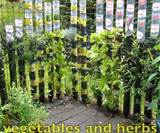 gardening vertical vegetable garden