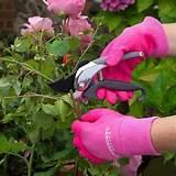 master gardener gloves
