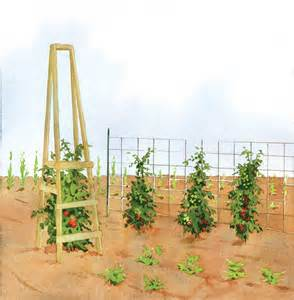 The Best Homemade Tomato Cages - Organic Gardening - MOTHER EARTH NEWS