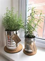 Photo Gallery of the Indoor Herb Garden for Healthy Lifestyle
