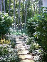 ideas with forest garden path ground covers hidden path pavers privacy