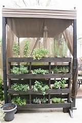 easy small vegetable garden ideas to try apartment therapy