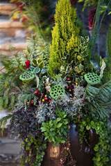 winter container gardening garden plantings structures pinterest