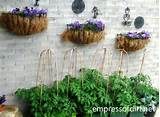 30 Garden container ideas | Wall-mounted planters