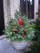 Winter Container Garden Ideas