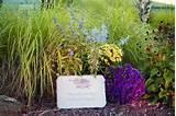 Create a Backyard Memory Garden