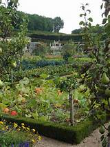 24 beautiful photos of edible landscape ideas | WefollowPics
