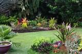famous small tropical garden design ideas 670 x 446 129 kb jpeg