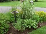 front yard mailbox garden | Gardening | Pinterest