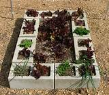 Cheap Ideas For Raised Garden Beds | Raised Garden Beds