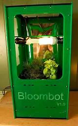bloombot jpg