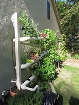 10 ideias para plantar em pequenos espaços - Ideias Green