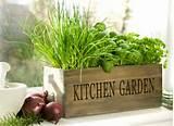 Kräuter Garten Ideen für herrliche Feng Shui Küche - Holzkasten