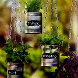 diy indoor herb garden green thumb pinterest