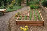 cheap raised garden bed ideas