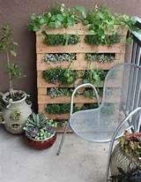 VERTICAL PALLET GARDEN! | gardening ideas | Pinterest
