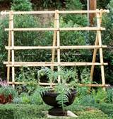 Garden Tomato Ideas | Native Garden Design