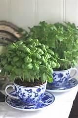 ... http://www.getcreativejuice.com/2014/04/indoor-herb-garden-ideas.html