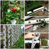 PVC-pipe-vertical-garden-ideas