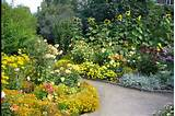 flowers for flower lovers.: flowers gardens ideas.