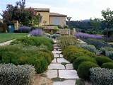 Here you go: Tuscan style backyard landscaping pictures hedges funeral ...