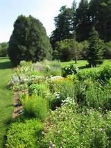 Upper Midwest Gardening: Exploring Arneson Acres