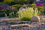 Rock garden | Rock garden ideas | Pinterest