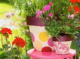 flower pots decoration ideas gardening flower pots decoration ideas