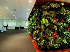 ... Indoor Garden Ideas One of 5 total Pics Applicative Green Wall Garden