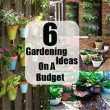 Gardening Ideas On A Budget And Small Cost | DIY Cozy Home World ...