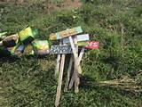 stakes | School Garden ideas | Pinterest