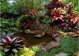 tropical landscaping ideas home design ideas