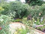 small garden ideas southern california