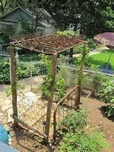 , Garden Ideas, Box Springs, Garden Arbors Trellis, Gardening Ideas ...