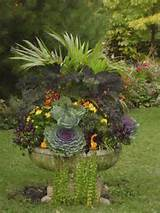 Fall Container: Container Gardens, Fall Containers, Container Planting ...