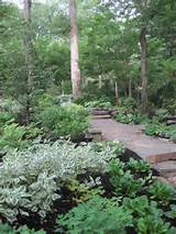 Garden Design: landscaping ideas shady areas Home Design