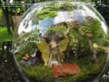 Terrarium Gardening: Cheesy picture (Terrarium...fairy woodland scene)