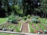 patio vegetable garden ideas container patio vegetable garden ideas