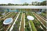youth center roof garden in chicago illinois 2 thecoolist the