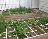 small garden ideas square foot veggie gardening eco balance