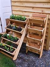 vegetable garden for herb, tomato, flower, and strawberry gardening ...