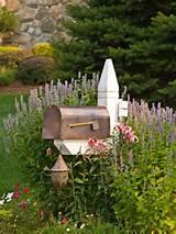 medium sized driveway garden design ideas renovations photos