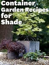 container plans ideas container garden plant combinations for shade