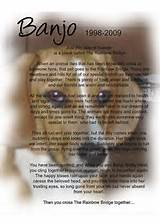 Rainbow bridge pet memorial | Flickr - Photo Sharing!