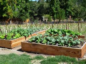 Raised Bed Vegetable Gardening : Benefits in Gardening