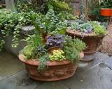 Beautiful Outdoor Decorative Flower Pots - : LoveShav.Com