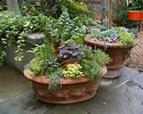 beautiful outdoor decorative flower pots loveshav com