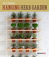 DIY Indoor Vertical Herb Garden #survivallife www.survivallife.com