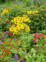 tags flower garden design plans flower garden design ideas