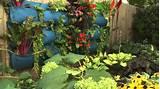 Edible Landscaping - YouTube | Aménagement comestible ou utilitaire ...